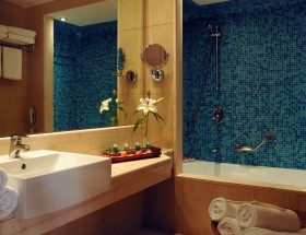 Standard bathroom for classic room