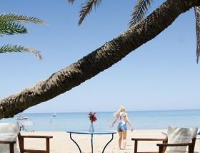 palm beach 2015 _SAT2350