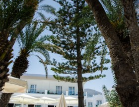 palm beach 2015 _SAT2459